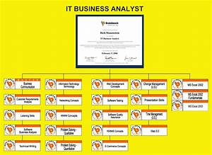 It Business Analyst Flow Chart