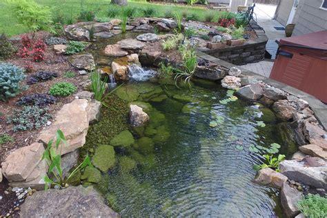 des moines backyard koi pond  add water