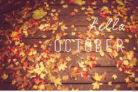 Hd Fall Pumpkin Wallpaper Hello October Pumpkin Photos Wallpaper Hd 2016