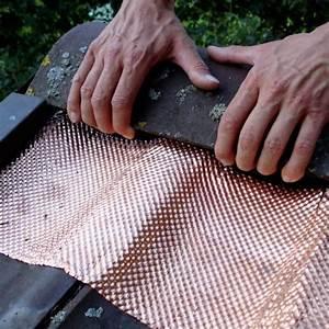 Moos Auf Dem Dach : dach schutz 5 meter strukturiertes kupferband baubedarf ~ Watch28wear.com Haus und Dekorationen