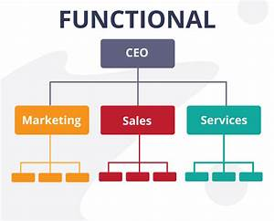 Team Structure For Marketing Agencies  Basics  Importance