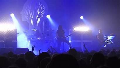 Concert Crowd Gojira Metal Heavy Wallpapers Background