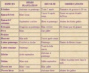 Quel Legume Planter En Septembre : quand planter mes legumes ~ Melissatoandfro.com Idées de Décoration
