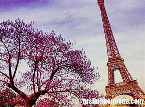 imagenes de la torre eiffel imagenes