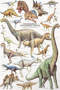 Dinosarus Of The Jurassic Period 1000 Piece Puzzle