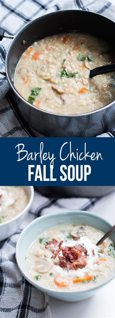 homestyle soup recipes check out homestyle barley chicken fall soup it s so easy to make vegetables soups and bar