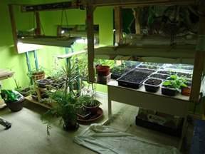 small kitchen setup ideas indoor garden lunarharvest