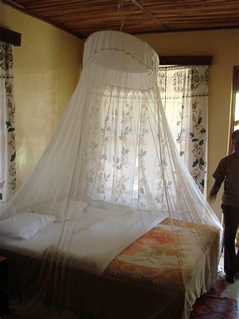 mosquito net    bed urbanization