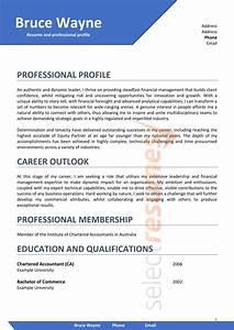 Resume Template Accountant Executive Design 201 Select Resumes
