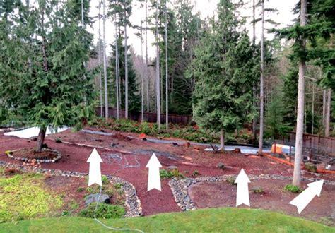 wooded garden mavis garden blog landscape fabric and gladiolus one hundred dollars a month