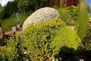Holzasche Im Garten Verwenden : findlinge im garten verwenden so dekorieren sie sch n ~ Markanthonyermac.com Haus und Dekorationen