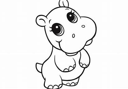 Coloring Pages Animal Hippo Cartoon Whitesbelfast