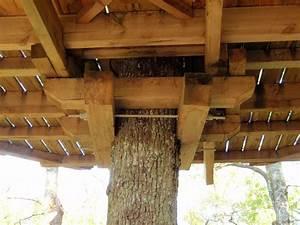 Comment Faire Une Cabane Dans Les Arbres : cabanes dans les arbres fixations recherche google tree house pinterest fixation les ~ Melissatoandfro.com Idées de Décoration