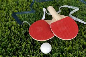 Free Images : sport, play, pool, sports equipment, table tennis, ping pong, table tennis bat ...  Table Tennis Sports