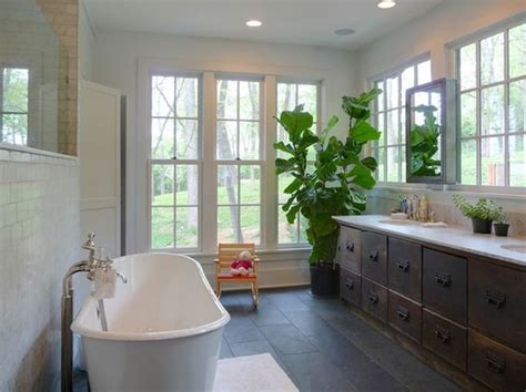plants  suit  bathroom fresh decor ideas