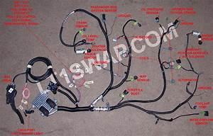 L99  6l80 Wiring Question    - Corvetteforum