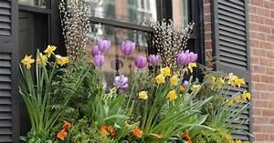 Balkonkästen Gestalten Ohne Blumen : blumen f r balkonk sten mein sch ner garten ~ Bigdaddyawards.com Haus und Dekorationen
