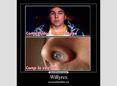 Willyrex Desmotivaciones