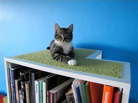 modern cat  dog beds creative pet furniture design