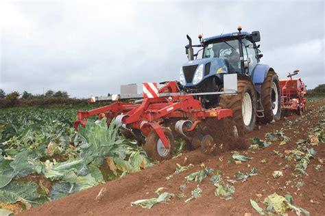 chambre d agriculture 29 semis de couvert après chou fleur journal paysan breton