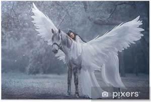 Schöne Einhorn Bilder : poster sch ne junge elfe mit einem einhorn spazieren sie tr gt ein unglaublich helles wei es ~ Frokenaadalensverden.com Haus und Dekorationen