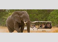 Luxury African Safari African Safari Tours Abercrombie