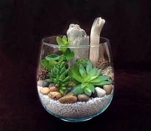 Terrarium Plante Deco : cactus en bocal teciverdi ~ Dode.kayakingforconservation.com Idées de Décoration