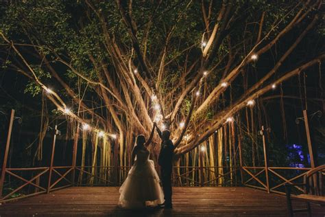 Lights For Tree by The Most Amazing Wedding Photos Boxed Wedding Invitations