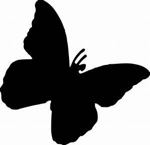 Butterfly Stencils Designs   www.pixshark.com - Images ...