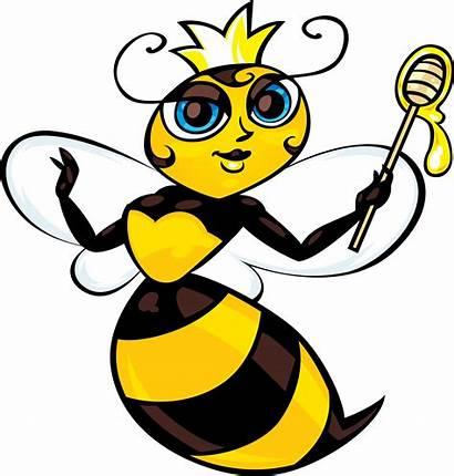Cartoon Bee Bumble Bumblebee Clipart Clipartmag