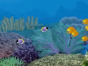 Free Animated Fish Aquarium Screensaver Download