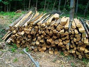 1 Stère De Bois En Kg : domaine du steinberg achat et vente de bois de chauffage ~ Dailycaller-alerts.com Idées de Décoration