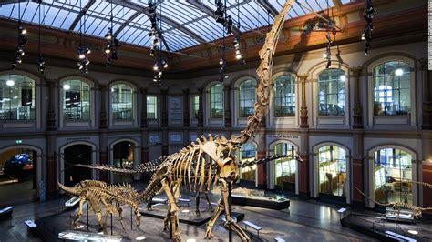 10 Of The World's Best Dinosaur Museums Cnncom