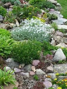 Blumen Für Steingarten : romantischer steingarten mit kakteen steingarten pinterest steingarten kaktus und romantisch ~ Markanthonyermac.com Haus und Dekorationen