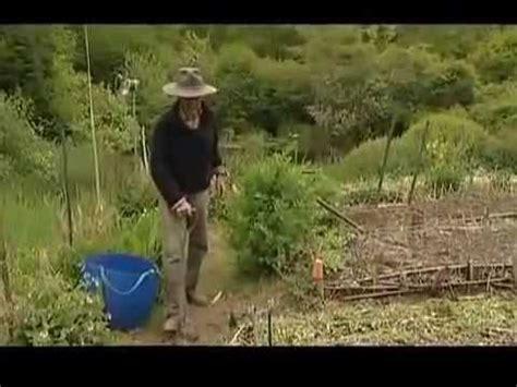 Jardinage Sans Travail Du Sol  Jardin Du Marais Yves