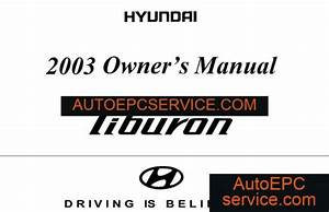 Download Hyundai Trajet Electrical Troubleshooting Manual