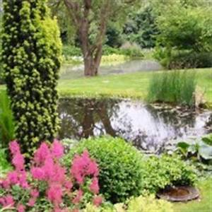 Pflanzen Für Schattige Plätze : astilben farbe f r schattige pl tze ~ Orissabook.com Haus und Dekorationen
