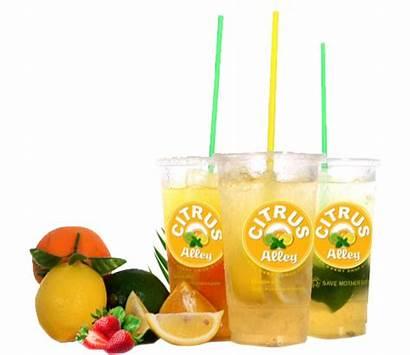 Citrus Drop Alley Counts Every Healthier Fresh