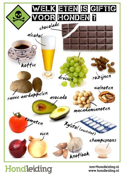 diarree door druiven
