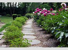 Peonies in Clare's garden in New Jersey FineGardening