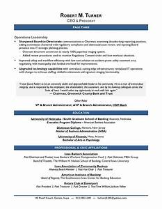 what is the best template for a resume - award winning ceo sample resume ceo resume writer
