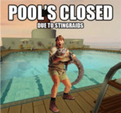 Stingray Meme - steve irwin s stingray death know your meme