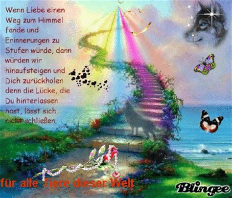 regenbogenbruecke picture  blingeecom