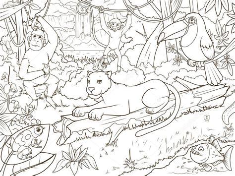 animales del bosque selva libro  colorear de dibujos