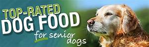 what is the best dog food for senior dogs With best senior dog food