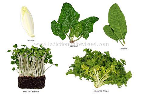 jeux de cuisine virtuel alimentation et cuisine gt alimentation gt légumes gt légumes