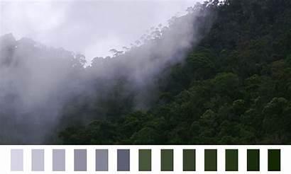 Palette Natural Dark Colors Gray Lavender Purple