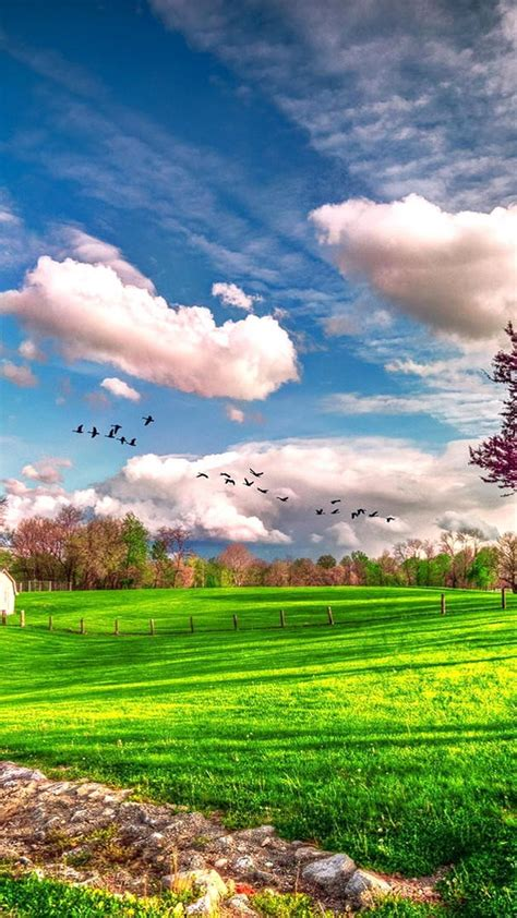 See more ideas about mobile wallpaper, nature wallpaper, beautiful nature. Spring Nature Backgrounds For Android - 2020 Android Wallpapers