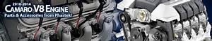 2010 L99 V8 Engine Serpentine Belts And