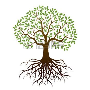 Tree Trunk And Roots Template by Tree Roots Silhouette Oak Tree And Roots Vector